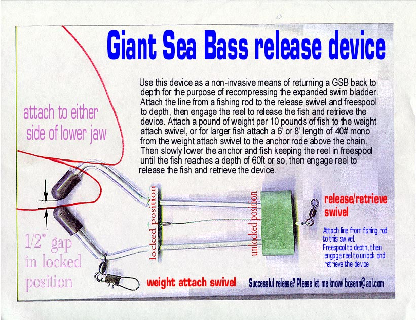Giant Sea Bass Release Device